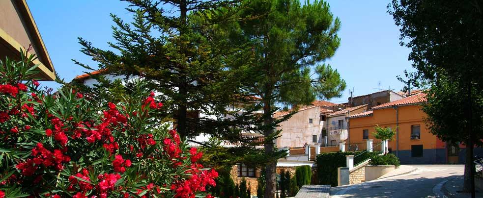 Medio ambiente ayuntamiento de tarazona for Oficina turismo tarazona
