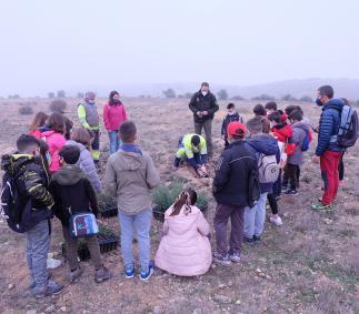 Los escolares turiasonenses plantan 1.500 árboles en la Dehesa